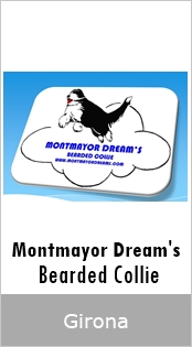 Montmayor Dream's