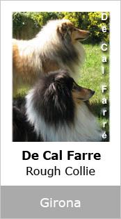 De Cal Farre