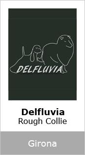 Delfluvia