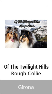 of the twilight hills