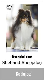 Gardelcan